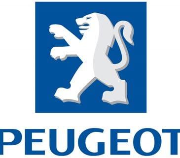 Disklok Peugeot campers